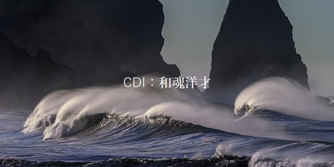 【和魂洋才の戦略コンサル】コーポレイトディレクション(CDI)の年収や採用情報