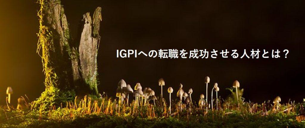 igpi-img02