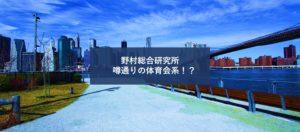 【体育会系ITコンサル】野村総合研究所(NRI)の年収と採用について