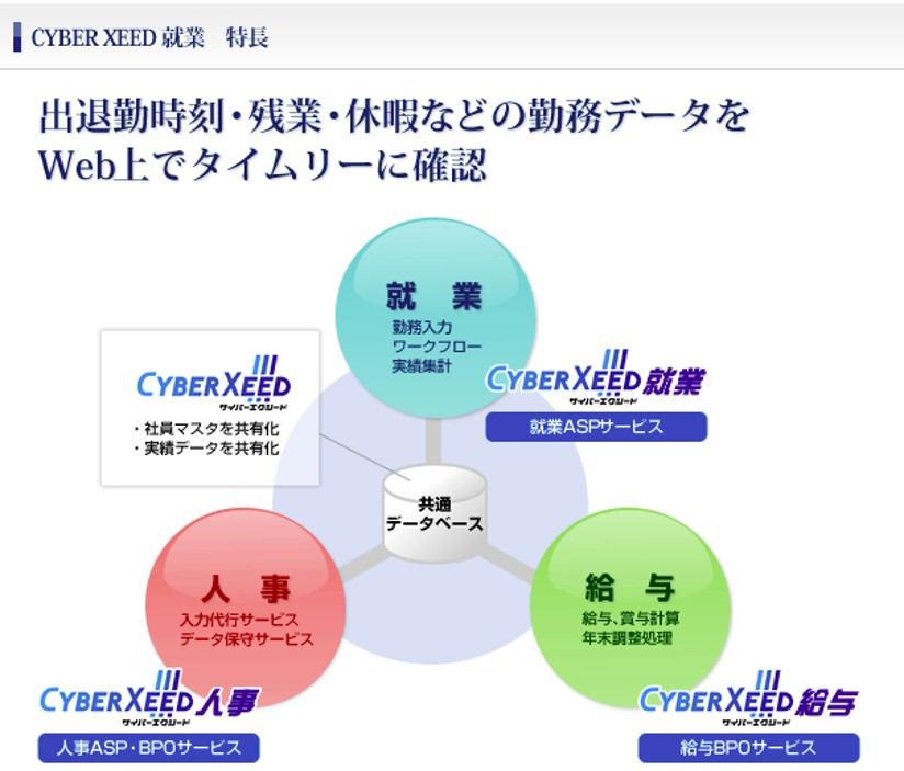 cyber xeed 就業